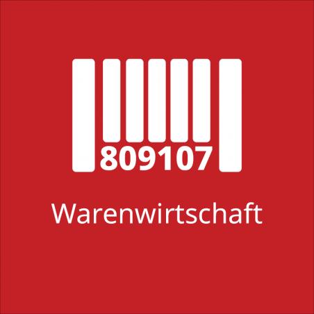 Comatic Hauptbuch (Fibu, Buchhaltungsprogramm)