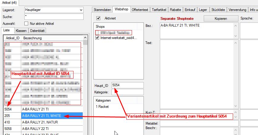 Modul Inline Varianten ShoCo Schnittstelle